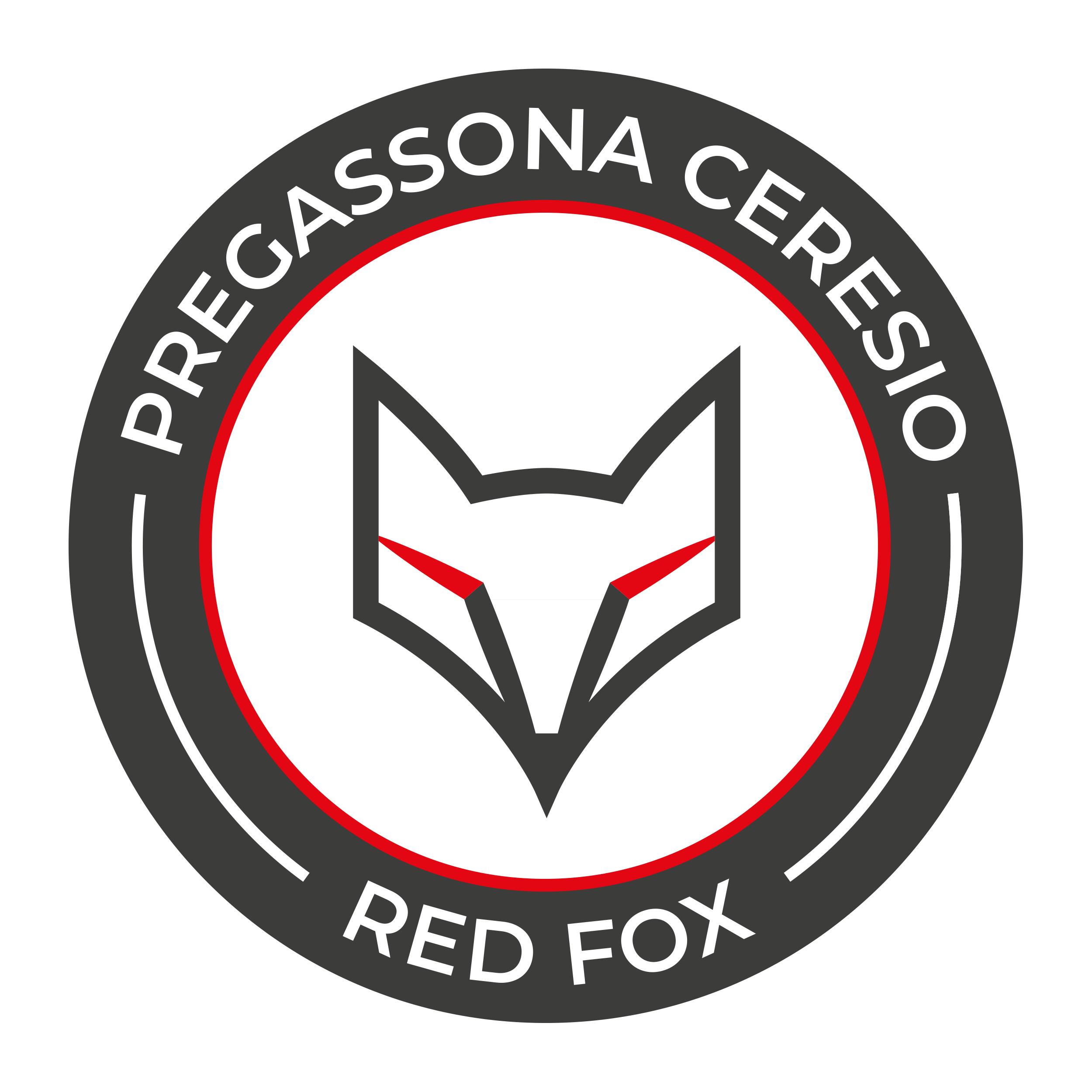 Hockey Club Pregassona Ceresio RedFox